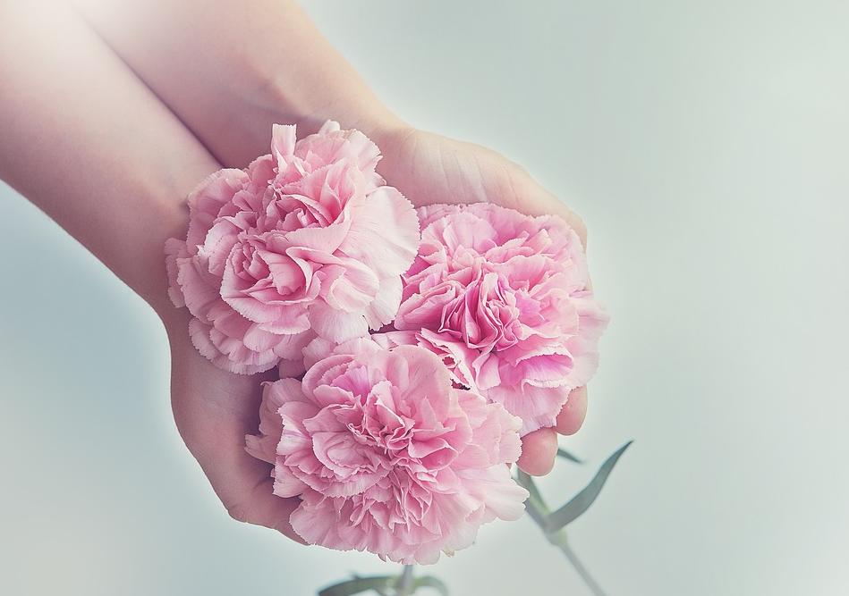 Blumen Express – schnell und bequem Blumen versenden
