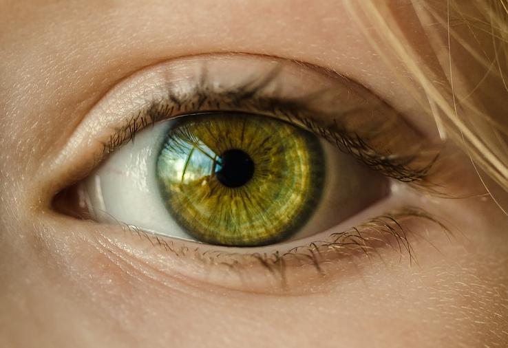Multifokale Kontaktlinsen: Ein sehr angenehmes Tragegefühl